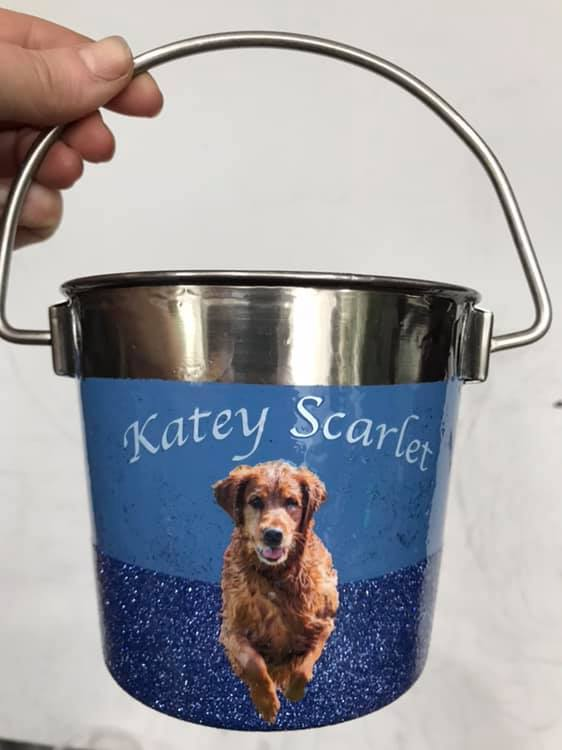 Themed FULLY Customized-Heavy Duty Stainless Steel Water & Feed Pails