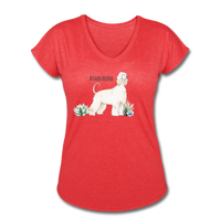Afghan Hound Women's Tri-Blend V-Neck T-Shirt - heather red