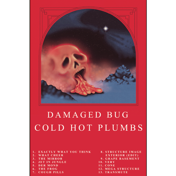 "DAMAGED BUG - ""Cold Hot Plumbs"" (CASS)"