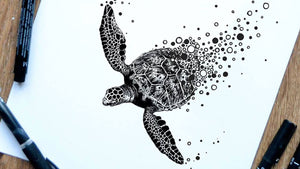 Cai Burton Turtle Illustration