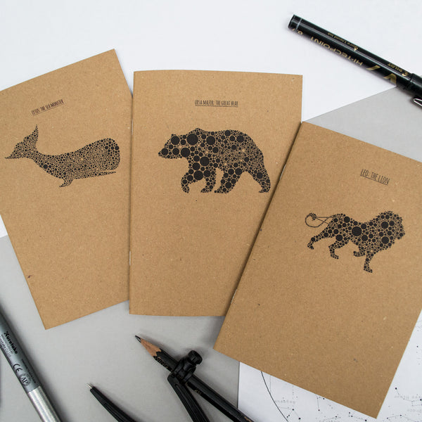 "Set of 3 ""Stargazer"" A6 Notebook Pack"