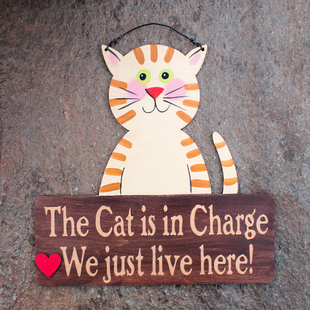 Cat Is In Charge! - www.boobaloo.com