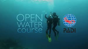 PADI Open Water Diver Course E-Learning code