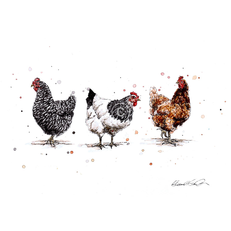 Chickens Ink and Watercolour Signed Limited Edition Print