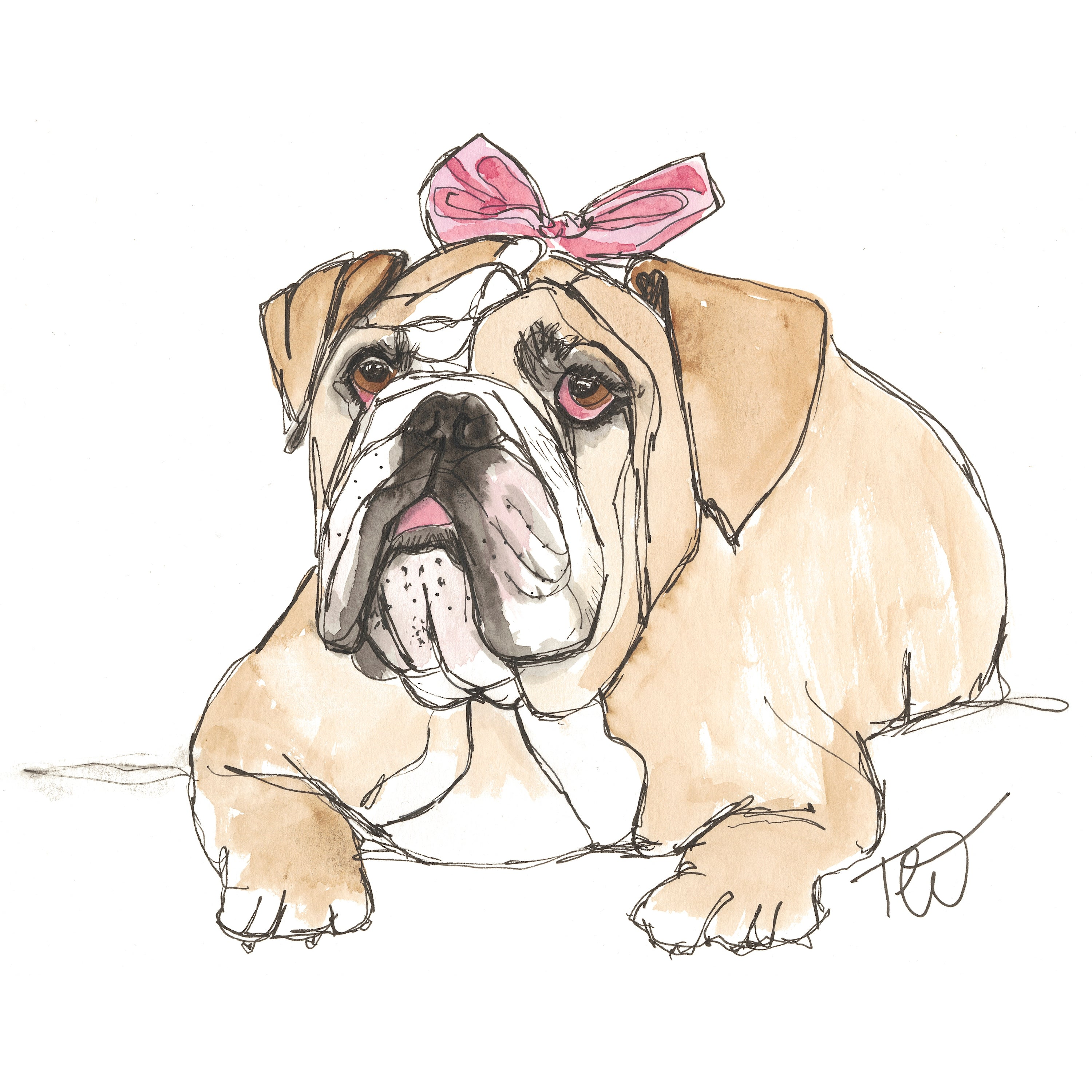 Gertrude- Bulldog Ink & Watercolour Limited Edition Giclee Print