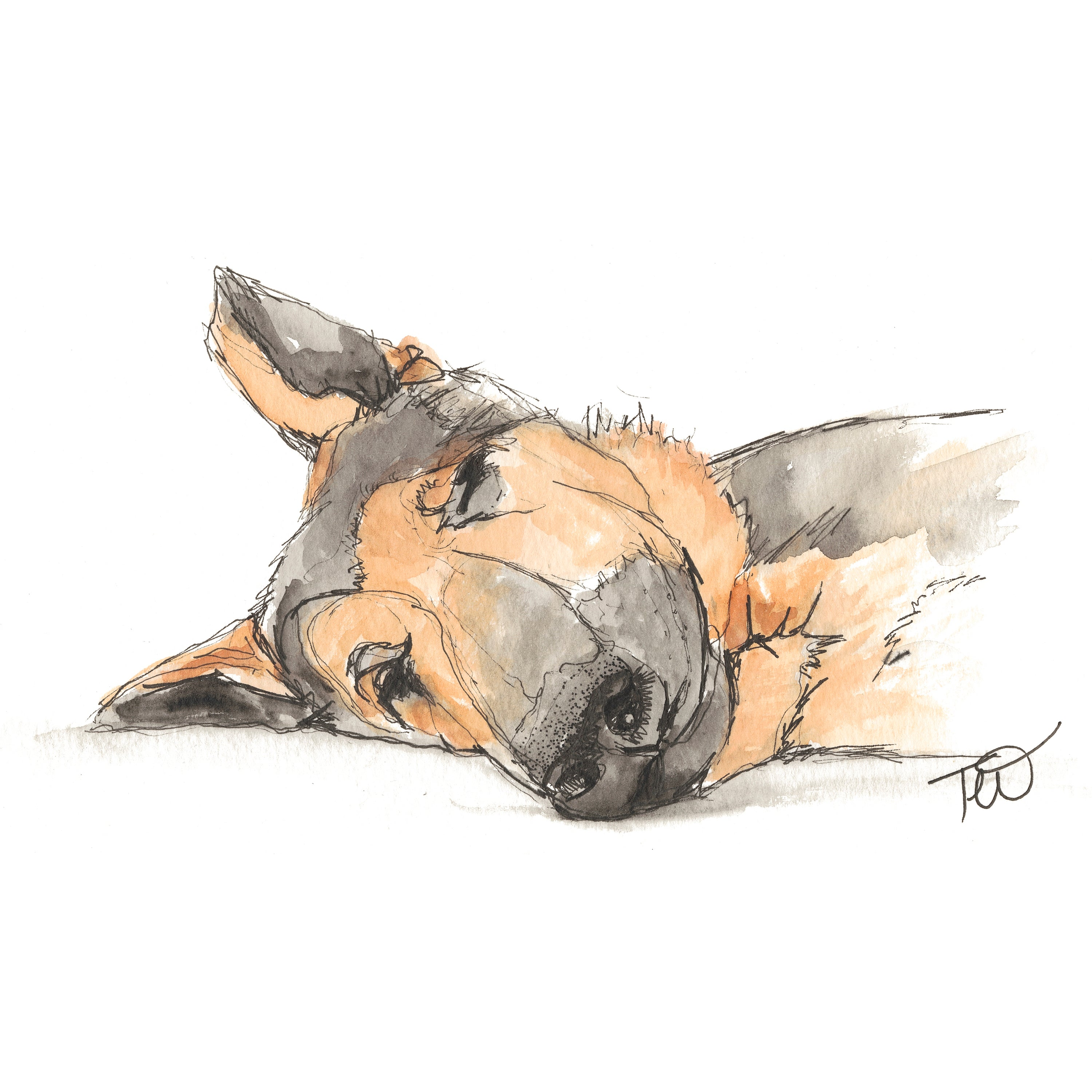 Sleepy Rebel - German Shepherd Ink & Watercolour Limited Edition Giclee Print