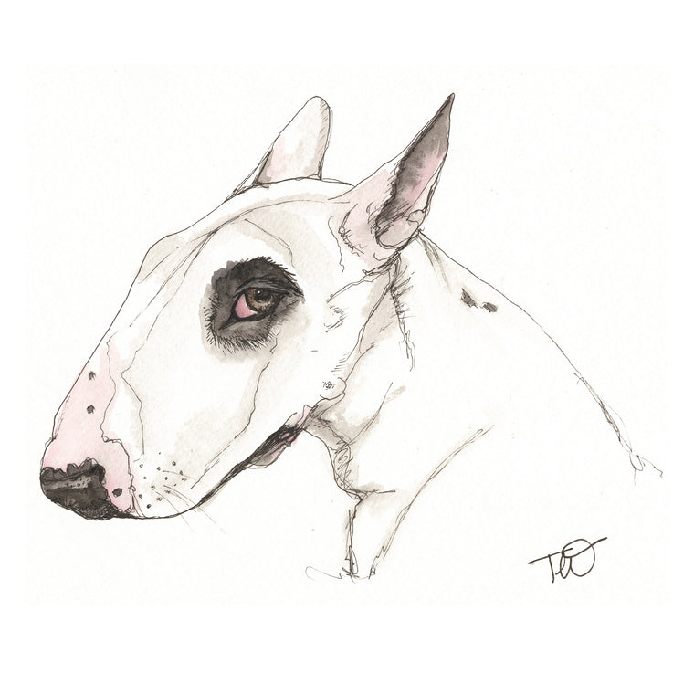 Buster - Bull Terrier Ink & Watercolour Limited Edition Giclee Print