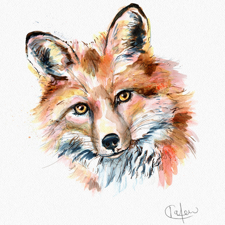 Inky Fox Framed Print in White