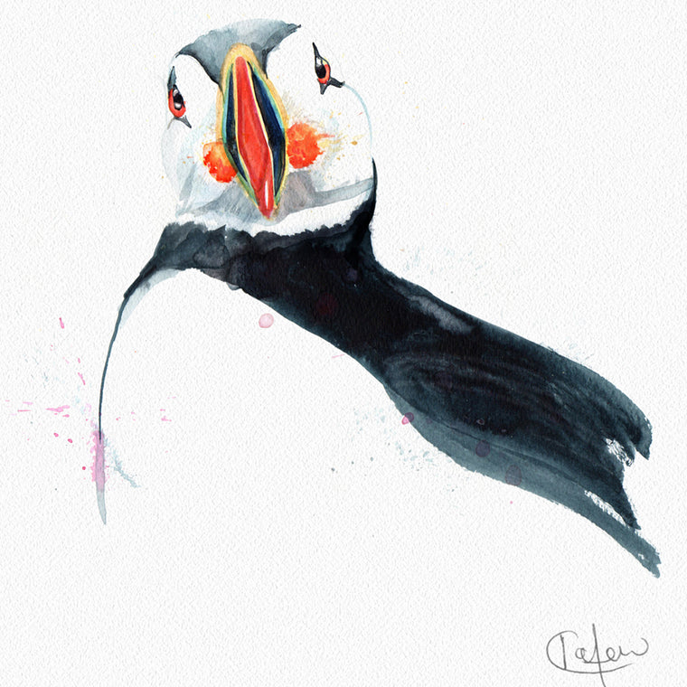 Inky Puffin Framed Print in White
