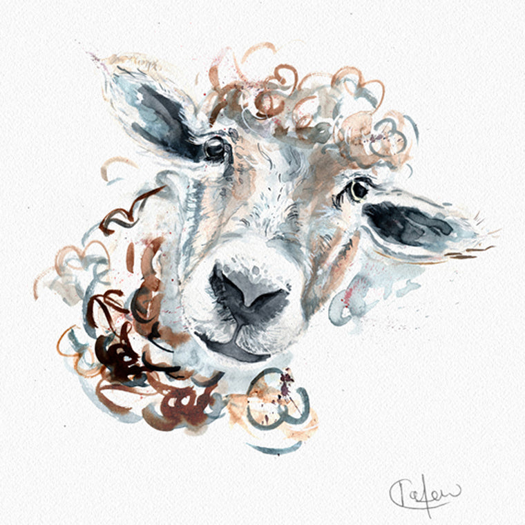 Inky Sheep Framed Print in White
