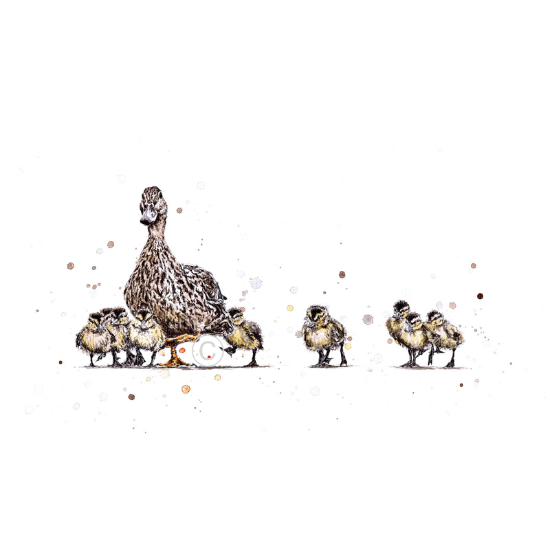 Mother Duck Ink and Watercolour Signed Limited Edition Print