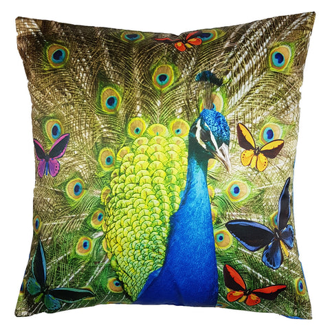 One Of A Kind Peacock 43x43cm Cushion