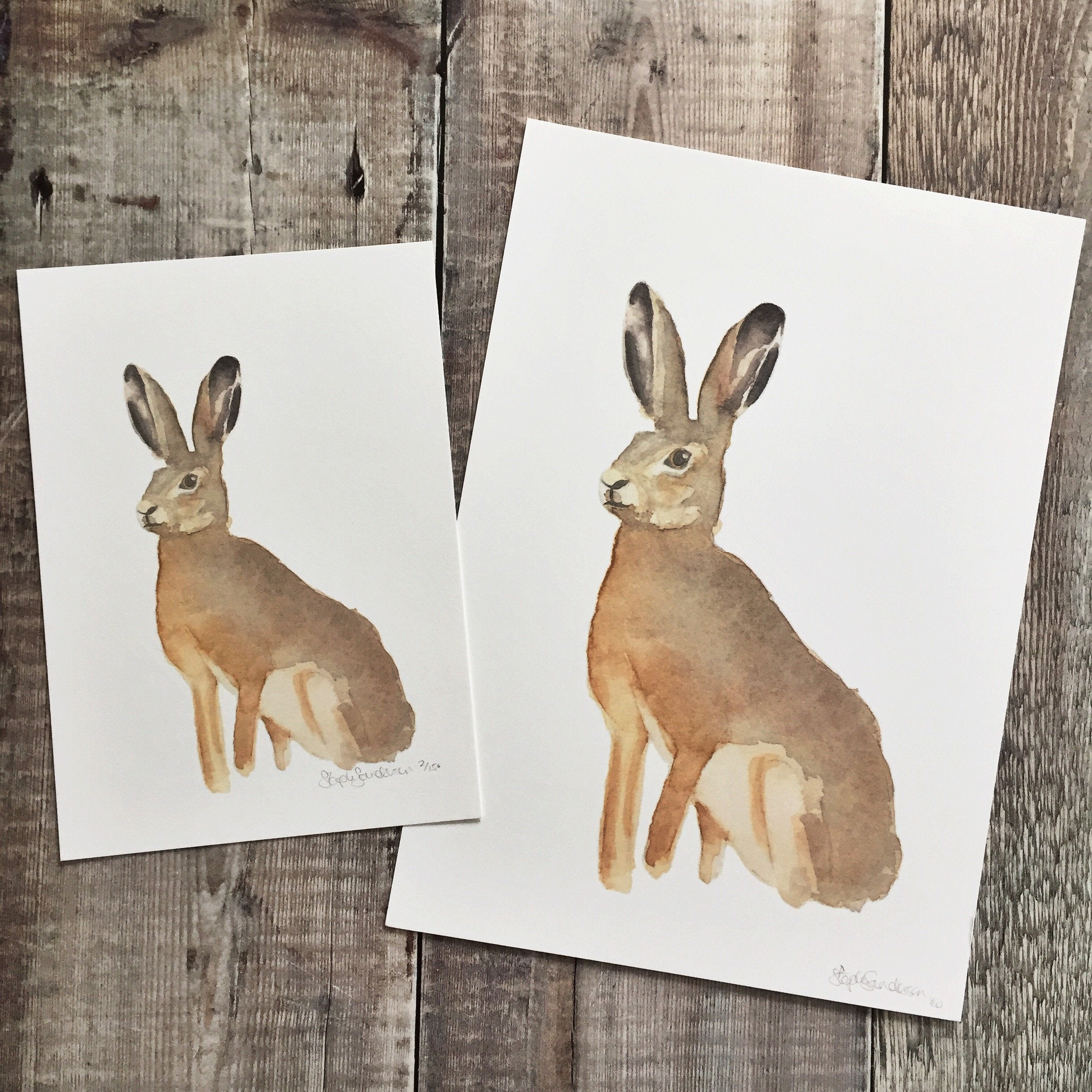 Hare Spring Solitude Watercolour Print A4 and A5