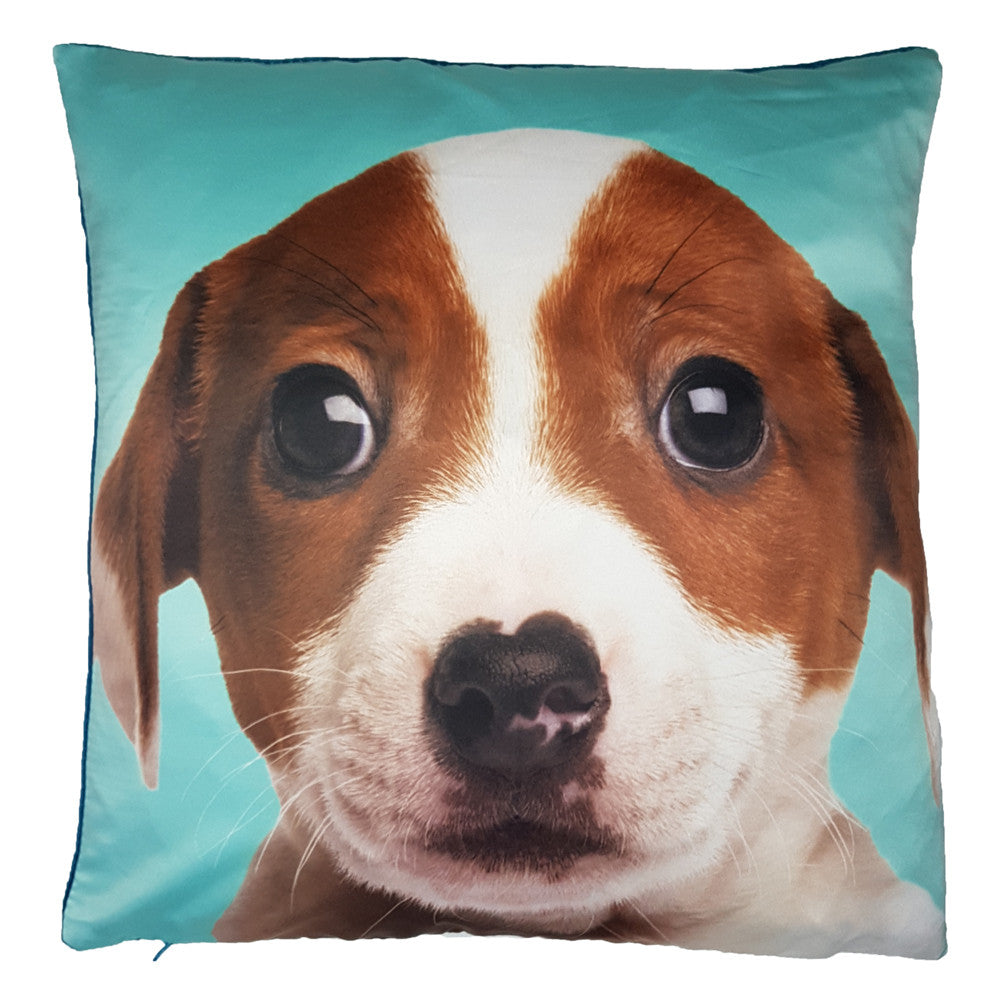 One Of A Kind Pretty Terrier Puppy 43x43cm Cushion