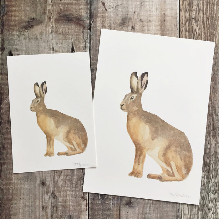 Hare Watching & Waiting Watercolour Print