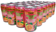 Hawaiian Sun Drink - Pass-O-Guava (24 Pack)