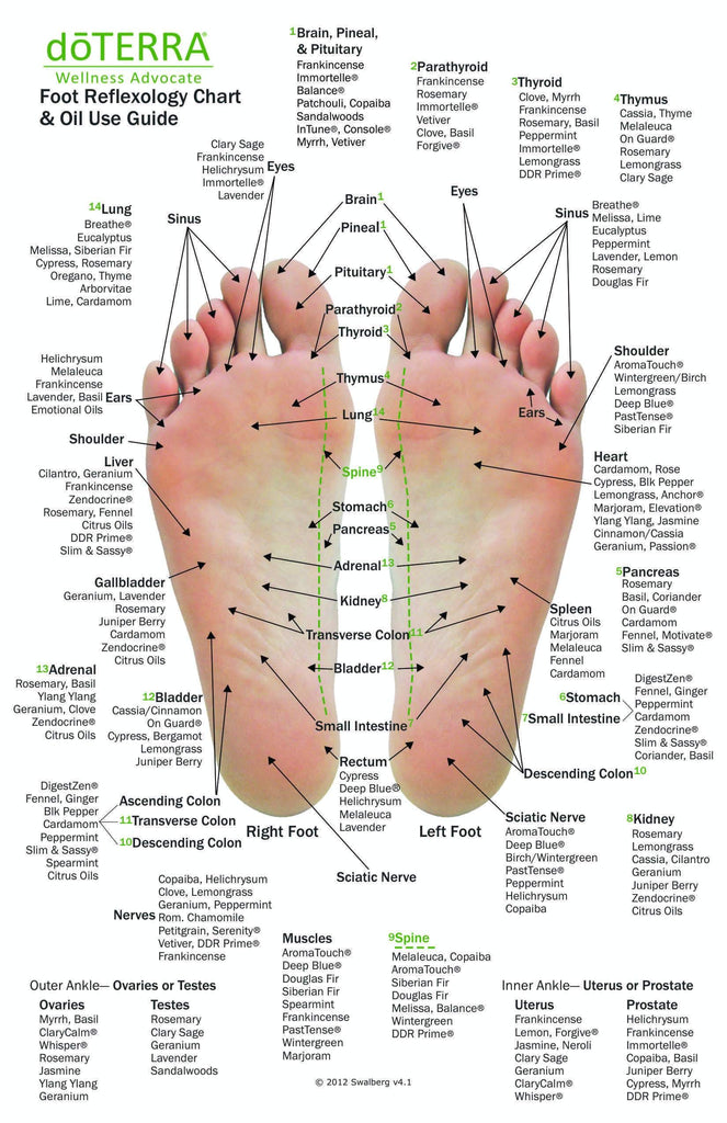 Hand foot reflexology on cardstock 85x55 sheet ccuart Images