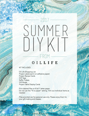 Summer 2017 DIY Download