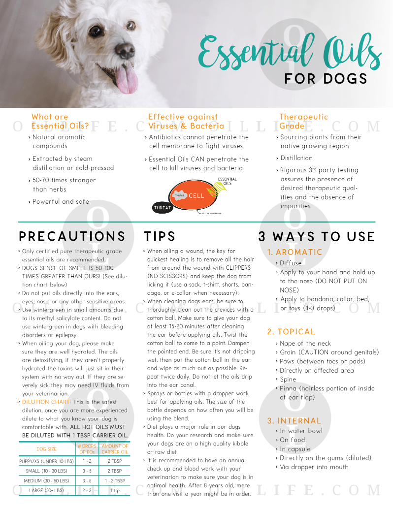 Essential Oils For Dogs Tear Pad Oil Life