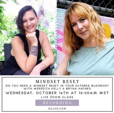 Mindset Reset Workshop - Recording