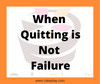 When Quitting is Not Failure