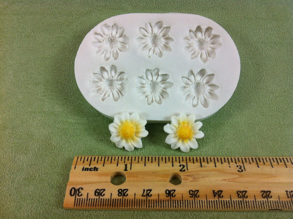 Six Small Daisy