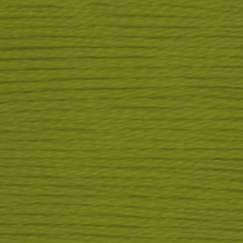 Dentelles 469 Avocado Green