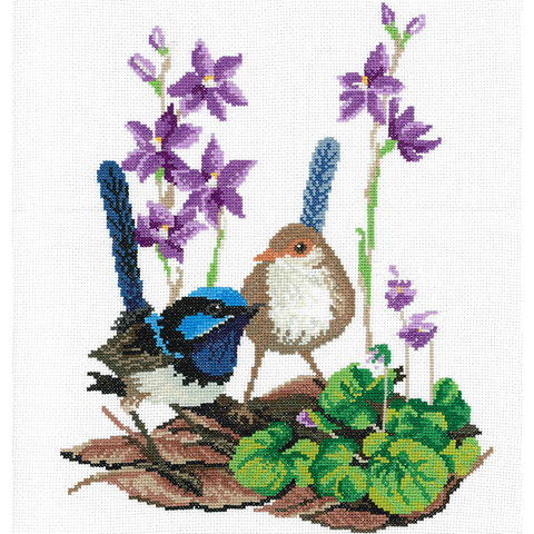 HW BLUE WRENS & SUN ORCHIDS