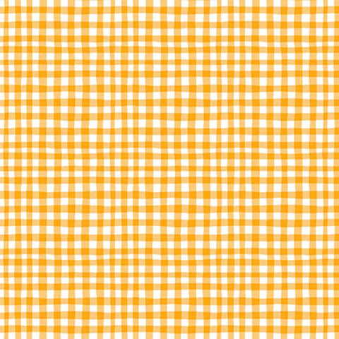 FAMILY FUN DAY - GINGHAM PLAY - CX7161-SUN