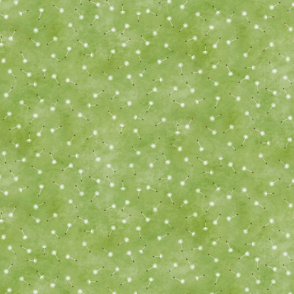 THE PIXIE COLLECTION - DELICATE DANDELIONS DC8968-KIWI