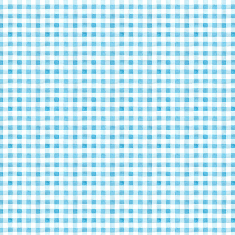 PICNIC BY THE LAKE -SUMMER GINGHAM DC9840-BLUE