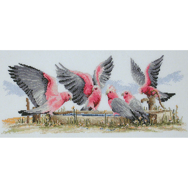 Galahs by the Water Pump  FJ-1006