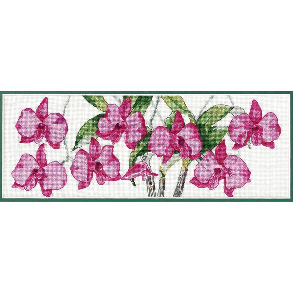 Cook Town Orchid  HW005