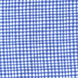 GINGHAM PLAY - COBALT