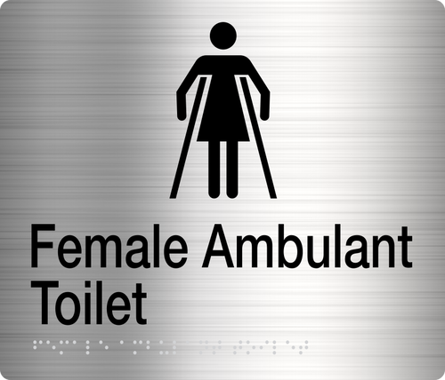 Female Ambulant Toilet  Stainless Steel