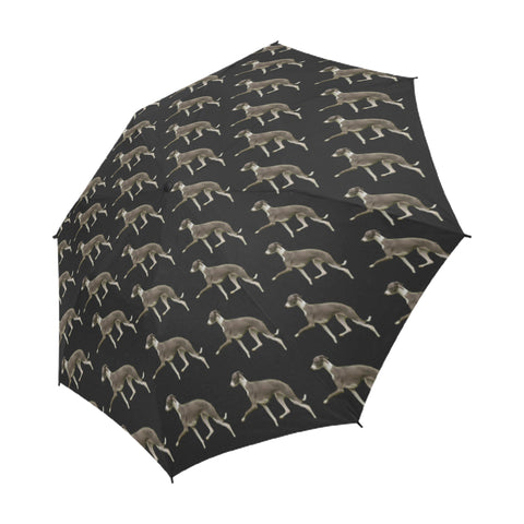 Italian Greyhound Umbrella - Semi Automatic
