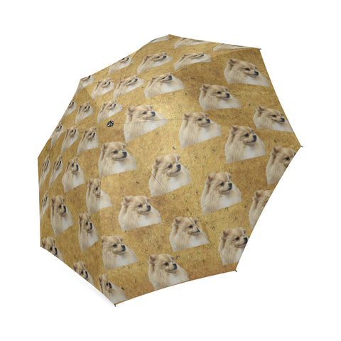 Pomeranian Umbrella