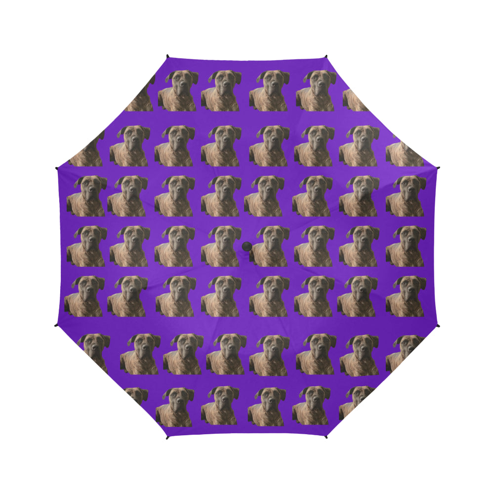 Boerboel/South African Mastiff Umbrella - Purple