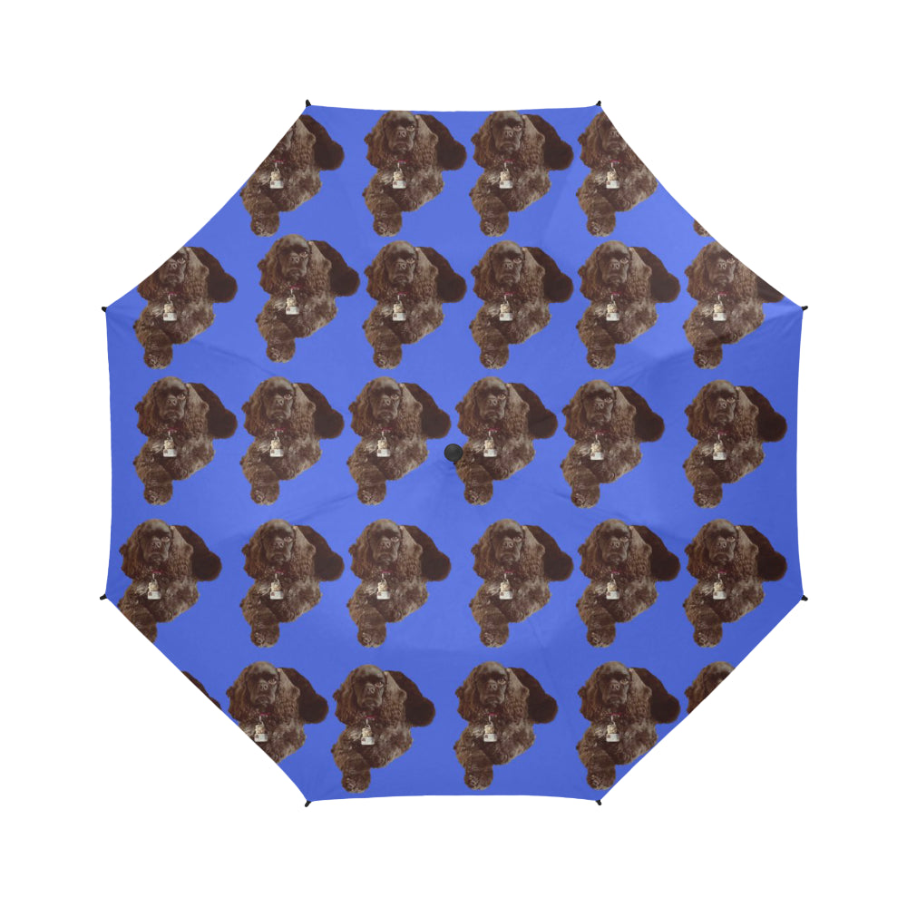 Cocker Spaniel Umbrella - Chocolate American Auto Open