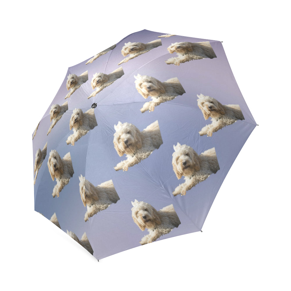 Cockapoo/Spoodle Umbrella