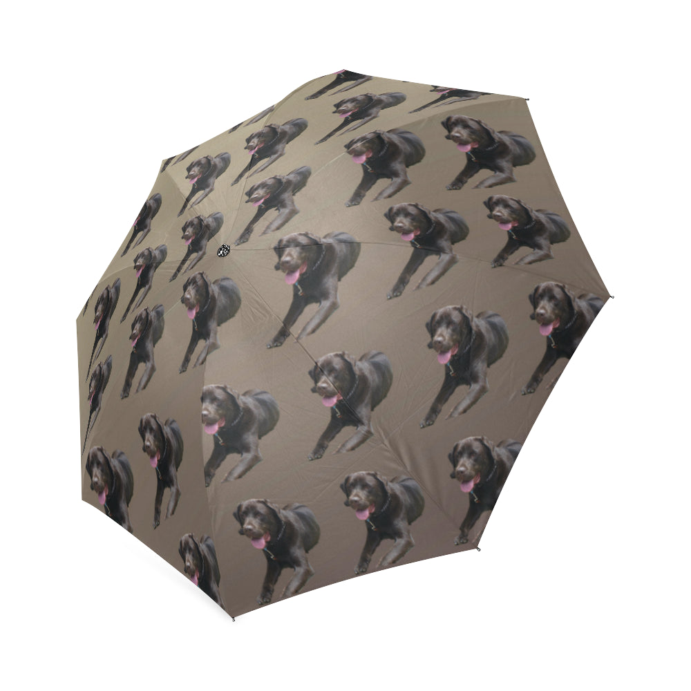 Chocolate Labrador Umbrella