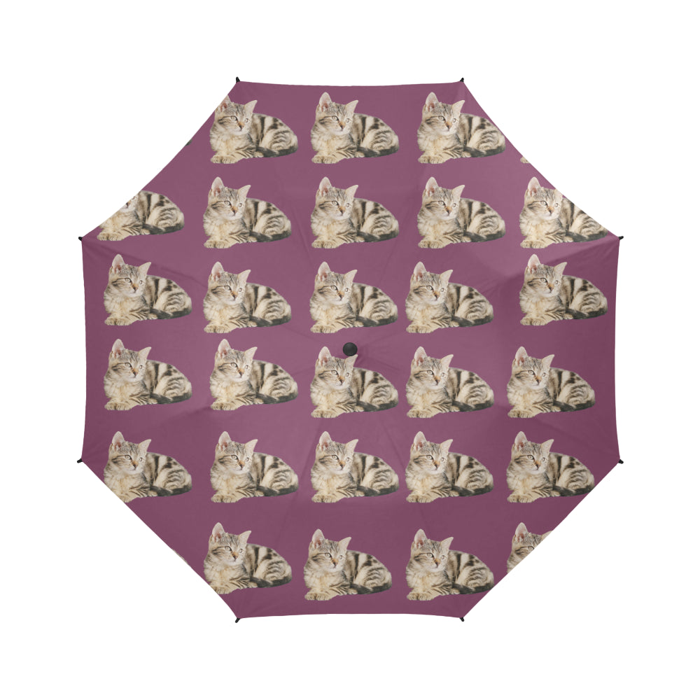 Tabby Cat Umbrella