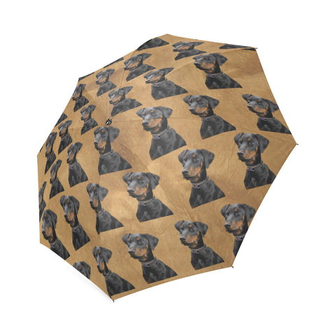 Doberman Umbrella 2