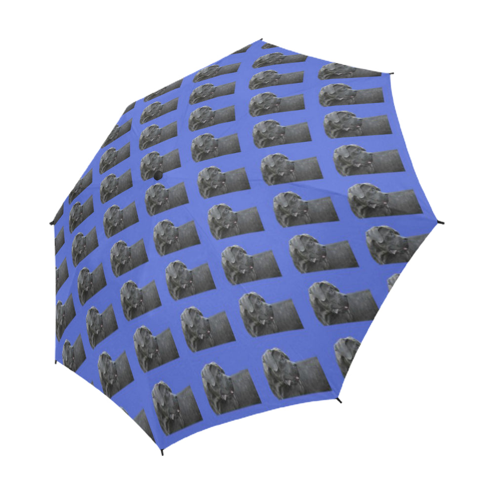 Cane Corso/Italian Mastiff Umbrella - Semi Automatic