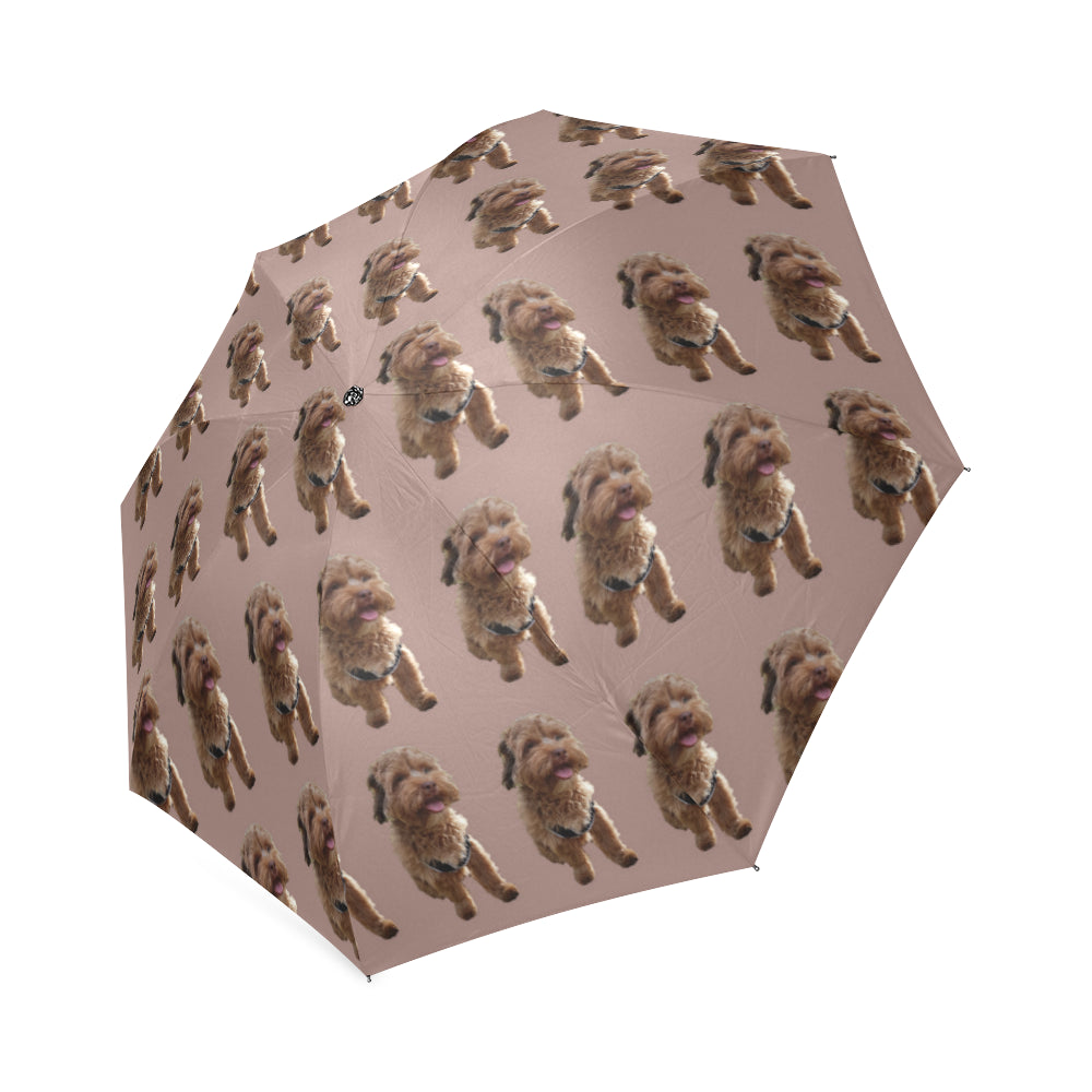 Shih Poo Umbrella