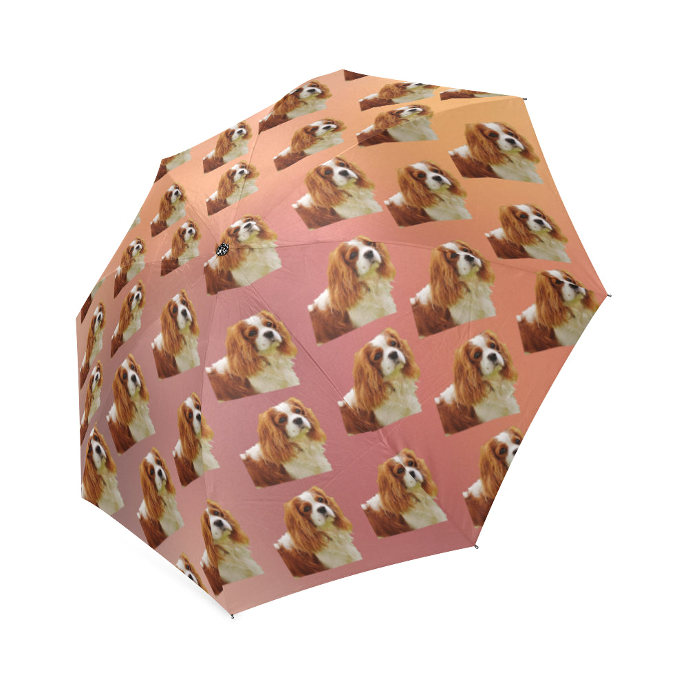 Cavalier King Charles Spaniel Umbrella Cathy Ann S Deals