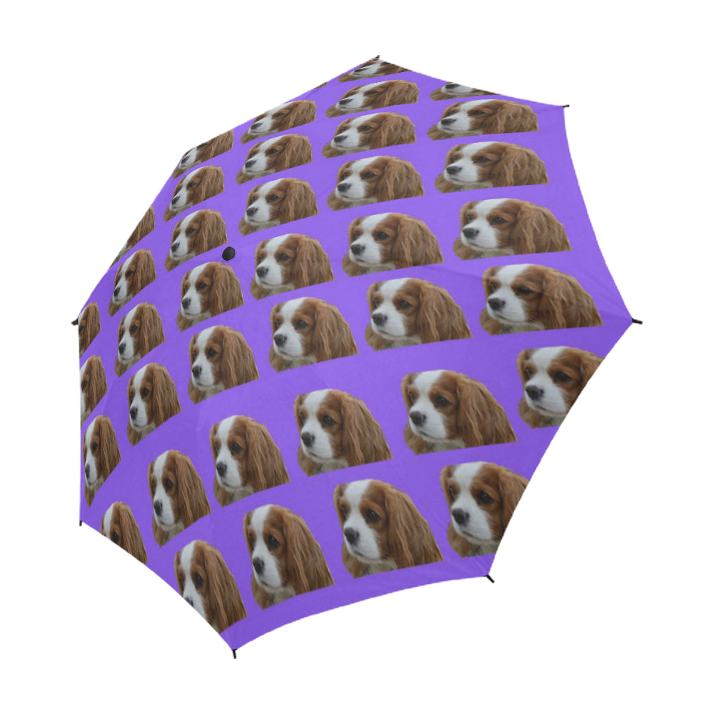 Cavalier King Charles Spaniel Umbrella - Purple