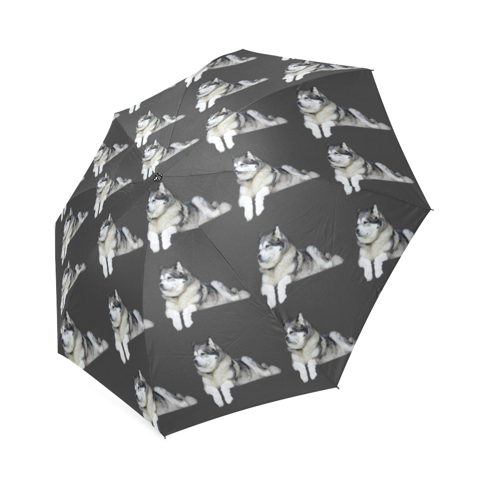 Alaskan Malamute Umbrella