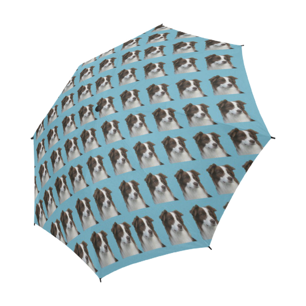 Border Collie Umbrella - Semi Automatic