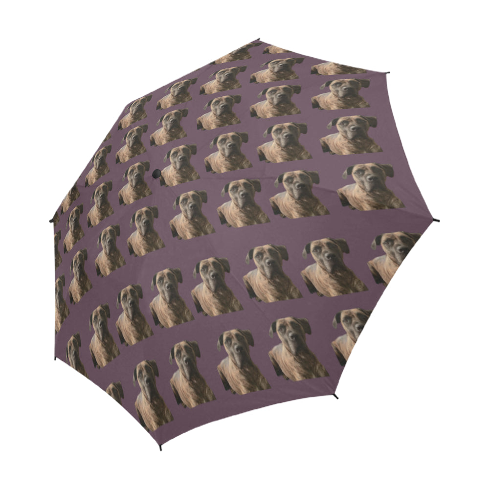 Boerboel/South African Mastiff Umbrella - Aubergine